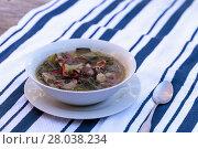 Купить «Duck breast soup with organic veggies», фото № 28038234, снято 16 июля 2019 г. (c) PantherMedia / Фотобанк Лори
