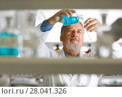 Купить «Senior male researcher carrying out scientific research in a lab», фото № 28041326, снято 21 сентября 2018 г. (c) PantherMedia / Фотобанк Лори