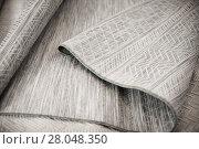 Купить «Image of wattled organic bamboo rugs at interior shop», фото № 28048350, снято 22 ноября 2017 г. (c) Яков Филимонов / Фотобанк Лори