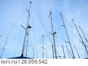 Купить «Masts of sailing yachts against blue sky», фото № 28059542, снято 21 февраля 2017 г. (c) EugeneSergeev / Фотобанк Лори