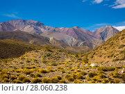 Купить «View of Andes mountains, Valle Hermoso», фото № 28060238, снято 9 февраля 2017 г. (c) Яков Филимонов / Фотобанк Лори