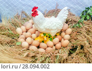 Купить «Plastic figure of white chicken, chicks and natural eggs», фото № 28094002, снято 23 сентября 2017 г. (c) FotograFF / Фотобанк Лори