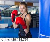 Купить «Portrait of woman boxer», фото № 28114786, снято 21 августа 2017 г. (c) Яков Филимонов / Фотобанк Лори