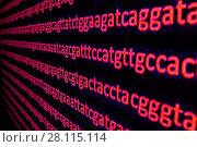 Купить «Genome sequencing», фото № 28115114, снято 8 января 2018 г. (c) Сергей Дрозд / Фотобанк Лори