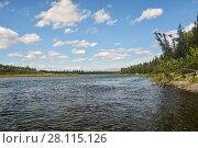 Купить «Река Щугор в нац. парке Югыд ва», фото № 28115126, снято 3 августа 2016 г. (c) Сергей Дрозд / Фотобанк Лори