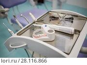 Купить «Model of human jaw with teeth, electrical toothbrush and glasses at dentist office, shallow dof», фото № 28116866, снято 19 октября 2016 г. (c) Losevsky Pavel / Фотобанк Лори