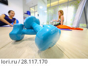 Купить «Two blue dumbbells are on floor, two women are in hall for fitness out of focus», фото № 28117170, снято 22 октября 2016 г. (c) Losevsky Pavel / Фотобанк Лори