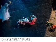 Купить «Прима-балерина участвует в поклонаях и принимает цветы от публики в балете Жизель на сцене театра», фото № 28118042, снято 19 августа 2017 г. (c) Николай Винокуров / Фотобанк Лори