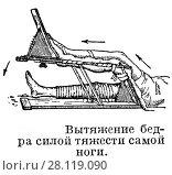 Купить «Вытяжение бедра силой тяжести самой ноги», иллюстрация № 28119090 (c) Макаров Алексей / Фотобанк Лори