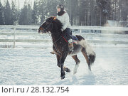 Купить «Winter teenage girl jump horse ride jumping», фото № 28132754, снято 26 января 2014 г. (c) Julia Shepeleva / Фотобанк Лори
