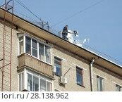 Купить «Рабочий коммунальной службы очищает крышу жилого дома от скопившегося снега. Бутырская улица, 9, корпус 2. Савеловский район. Город Москва», эксклюзивное фото № 28138962, снято 6 марта 2018 г. (c) lana1501 / Фотобанк Лори