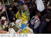 Купить «Женщины собирают весенние букеты из мимозы на цветочном рынке в преддверии праздника Международный женский день - 8 марта в Москве, Россия», фото № 28139270, снято 7 марта 2018 г. (c) Николай Винокуров / Фотобанк Лори