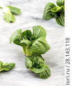 Купить «Fresh Pak-choi salad on an old worn table.», фото № 28143118, снято 4 февраля 2018 г. (c) Olesya Tseytlin / Фотобанк Лори