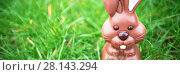 Купить «Chocolate bunny sitting in the grass», фото № 28143294, снято 23 января 2019 г. (c) Wavebreak Media / Фотобанк Лори