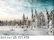 Купить «Зимний пейзаж. Северная Карелия. Россия.», фото № 28151478, снято 8 марта 2018 г. (c) Наталья Осипова / Фотобанк Лори