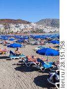 Купить «Пляж Playa del las Vistas с лежаками и зонтами на песке, город Лос Кристианос, остров Тенерифе, Канары, Испания», фото № 28151758, снято 1 января 2016 г. (c) Кекяляйнен Андрей / Фотобанк Лори