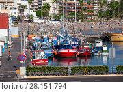 Городской порт Puerto Cristianos. Рыболовецкие лодки на фоне пляжа. Остров Тенерифе, Канары, Испания (2016 год). Редакционное фото, фотограф Кекяляйнен Андрей / Фотобанк Лори