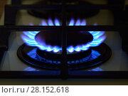 Купить «Газ горит на плите», фото № 28152618, снято 18 января 2018 г. (c) Арестов Андрей Павлович / Фотобанк Лори