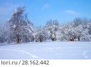 Купить «Зимний пейзаж. Свиблово. Юрловский народный парк», фото № 28162442, снято 6 февраля 2018 г. (c) Natalya Sidorova / Фотобанк Лори