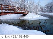 Купить «Зимний пейзаж. Свиблово. Юрловский народный парк», фото № 28162446, снято 6 февраля 2018 г. (c) Natalya Sidorova / Фотобанк Лори