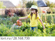 Купить «Child girl watering plants in a garden», фото № 28168730, снято 19 октября 2018 г. (c) Оксана Кузьмина / Фотобанк Лори