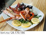 Купить «Prawns, langoustines and clams on white plate», фото № 28170186, снято 26 января 2018 г. (c) Яков Филимонов / Фотобанк Лори