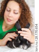Купить «Happy pretty woman in dress poses with funny rabbit on white bed in room, focus on pet», фото № 28170654, снято 20 ноября 2015 г. (c) Losevsky Pavel / Фотобанк Лори