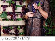Купить «Woman in transparent dress holds grape near boxex with grape in studio, noface», фото № 28171178, снято 27 ноября 2015 г. (c) Losevsky Pavel / Фотобанк Лори