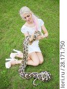 Купить «Pretty woman holds big snake on green lawn outdoor at summer day», фото № 28171750, снято 18 июля 2016 г. (c) Losevsky Pavel / Фотобанк Лори