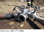 Faucet from firefighter hose on the ground in a park. Стоковое фото, фотограф Losevsky Pavel / Фотобанк Лори