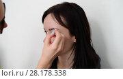 visagiste paints eyebrows young dark-haired girls. Стоковое видео, видеограф Володина Ольга / Фотобанк Лори