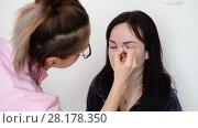 Купить «makeup artist paints eyebrows young dark-haired girls», видеоролик № 28178350, снято 14 марта 2018 г. (c) Володина Ольга / Фотобанк Лори