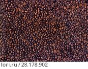 Купить «Фон из зёрен жареного кофе», фото № 28178902, снято 27 июня 2019 г. (c) V.Ivantsov / Фотобанк Лори