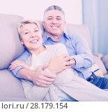 Купить «glad mature married couple in house are warmly reconciled after quarrel», фото № 28179154, снято 16 августа 2018 г. (c) Яков Филимонов / Фотобанк Лори