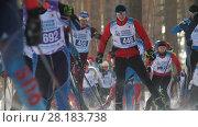 KAZAN, RUSSIA - March, 2018: Men skiers running ski marathon, big group at the start of the race. Редакционное видео, видеограф Константин Шишкин / Фотобанк Лори
