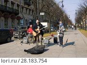 Молодые уличные музыканты играют на Большой Конюшенной улице Весна в Санкт-Петербурге (2017 год). Редакционное фото, фотограф Виктор Карасев / Фотобанк Лори