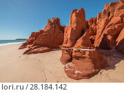 Купить «Spectacular views of ochre-coloured earth and sandstone cliffs, white sands and aquamarine waters of the Dampier Peninsula is one of the most spectacular...», фото № 28184142, снято 24 мая 2018 г. (c) Nature Picture Library / Фотобанк Лори