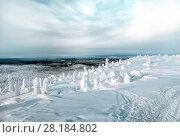 Купить «Зимний пейзаж. Вид с горы Кивакка на лесные просторы. Карелия. Россия», фото № 28184802, снято 8 марта 2018 г. (c) Наталья Осипова / Фотобанк Лори
