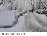 Купить «Автомобили  во дворе зимой», фото № 28188978, снято 22 февраля 2018 г. (c) Татьяна Чепикова / Фотобанк Лори