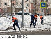 Купить «Рабочие гастарбайтеры весной в солнечный ясный день лопатами убирают старый снег с улиц Москвы», фото № 28189842, снято 17 марта 2018 г. (c) Наталья Николаева / Фотобанк Лори