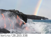 Купить «Hot lava from the 61G flow, emanating from Pu'u O'o on Kilauea Volcano, flows through lava tubes into the ocean in front of a double rainbow at the Kamokuna...», фото № 28203338, снято 22 мая 2018 г. (c) Nature Picture Library / Фотобанк Лори