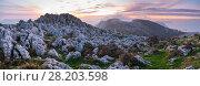 Купить «Panoramic landscape of Cerredo mountain at sunset, Castro Urdiales, Cantabria, Spain.», фото № 28203598, снято 21 августа 2018 г. (c) Nature Picture Library / Фотобанк Лори