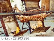 Купить «Сarcass of whole bull roasting on spit», фото № 28203886, снято 17 октября 2018 г. (c) Яков Филимонов / Фотобанк Лори