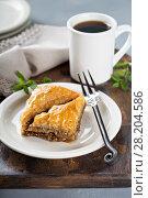 Купить «Baklava on a dessert plate», фото № 28204586, снято 14 марта 2018 г. (c) Елена Веселова / Фотобанк Лори
