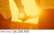 Купить «Loving couple - young man and beautiful girl walking at sunset meadow - silhouette, slow-motion», видеоролик № 28208450, снято 23 июля 2018 г. (c) Константин Шишкин / Фотобанк Лори
