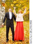 Купить «Beautiful woman and man throw up leaves in yellow autumn park», фото № 28210950, снято 10 октября 2016 г. (c) Losevsky Pavel / Фотобанк Лори
