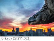 Купить «Sculpture of eagle and view of city during sunset in evening in Moscow. I have only one version of the photo with sharpening», фото № 28211062, снято 15 мая 2014 г. (c) Losevsky Pavel / Фотобанк Лори