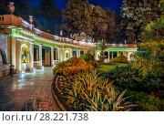 Купить «Дендрарий ночью  Sochi arboretum at night», фото № 28221738, снято 20 января 2018 г. (c) Baturina Yuliya / Фотобанк Лори