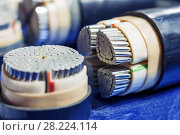 Cross section of high-voltage cable. Стоковое фото, фотограф Андрей Радченко / Фотобанк Лори