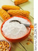 Купить «Starch and corn cob», фото № 28224178, снято 17 марта 2018 г. (c) Надежда Мишкова / Фотобанк Лори